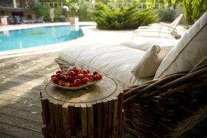 Pool & lounge chair